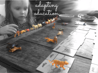 May 2016 Adapting Education
